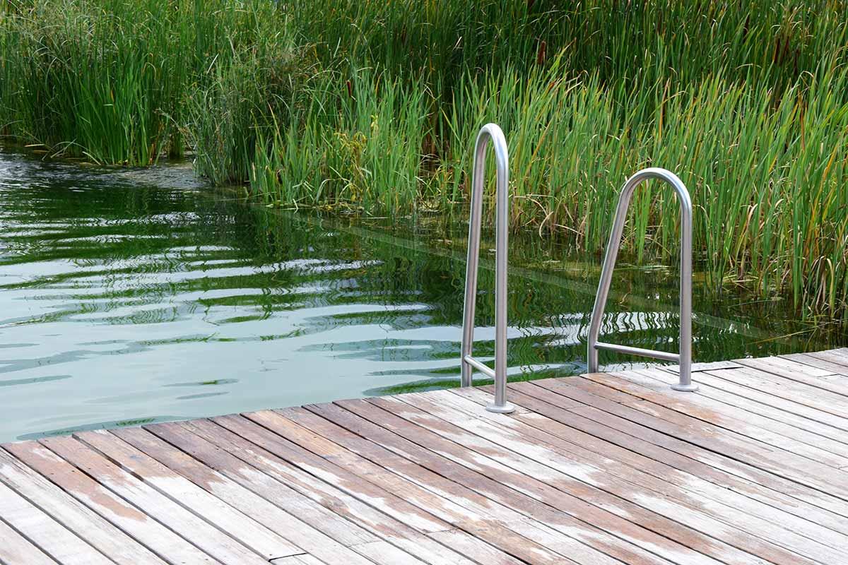 Holzsteg mit Leiter am Teich