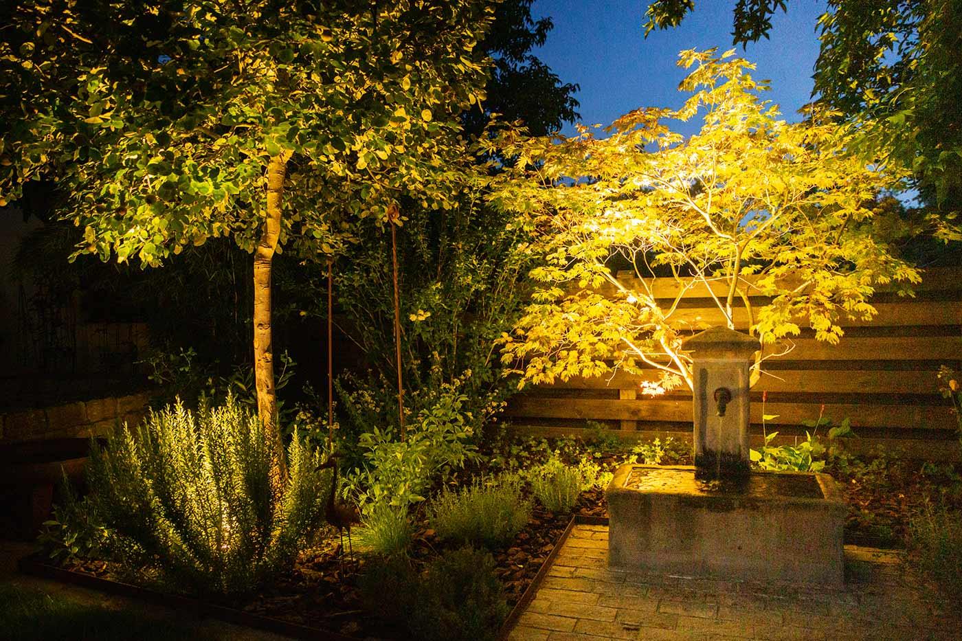 Romantischer Garten Lichtinstallation